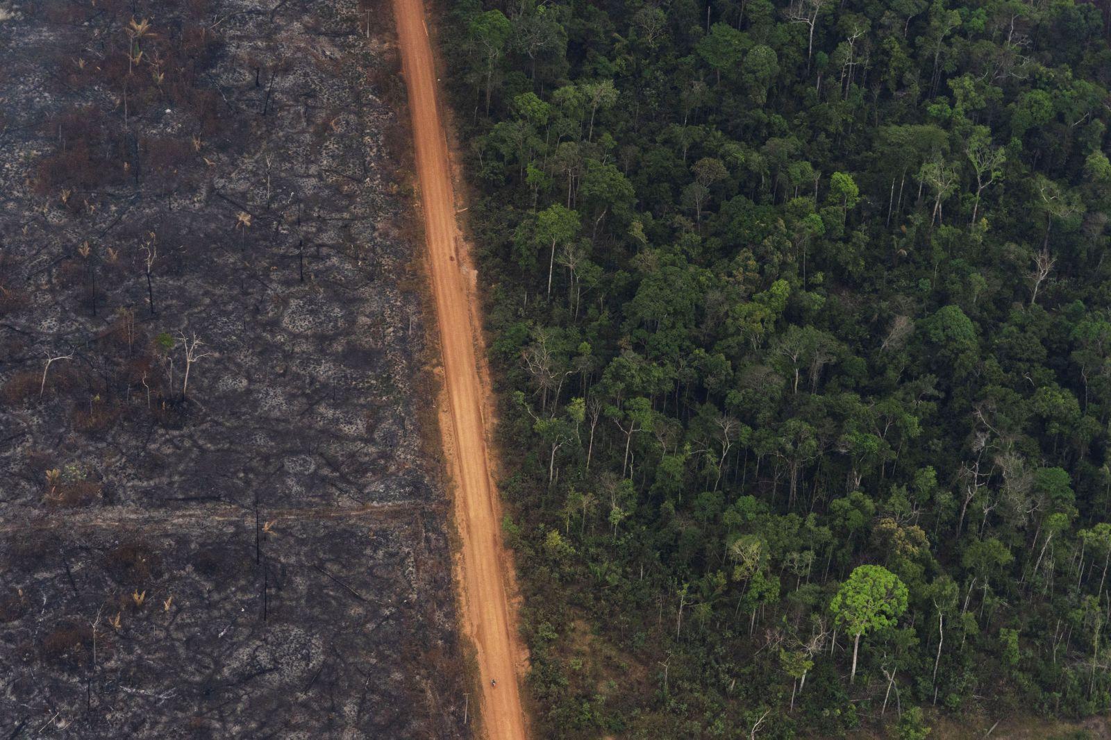V Amazonskom pralese narástol počet devastujúcich požiarov takmer o tretinu. Prezident Bolsonaro však katastrofu ignoruje