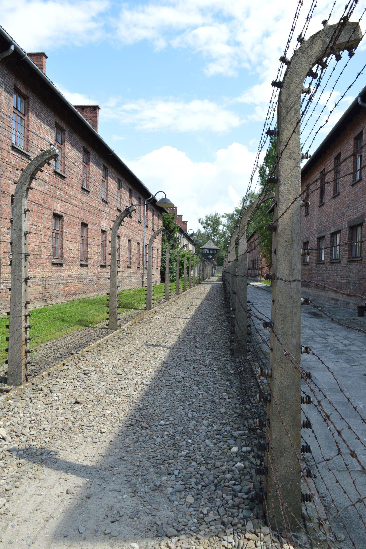 Osvienčim: Vyššie postavení väzni šikanovali zajatcov, niektorí sa ale snažili pomáhať