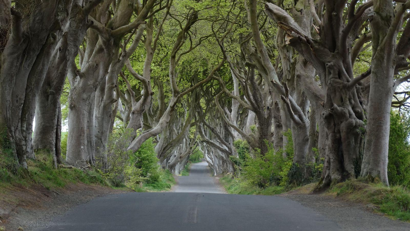 Kvôli Game of Thrones navštívilo Severné Írsko za rok 350 000 turistov