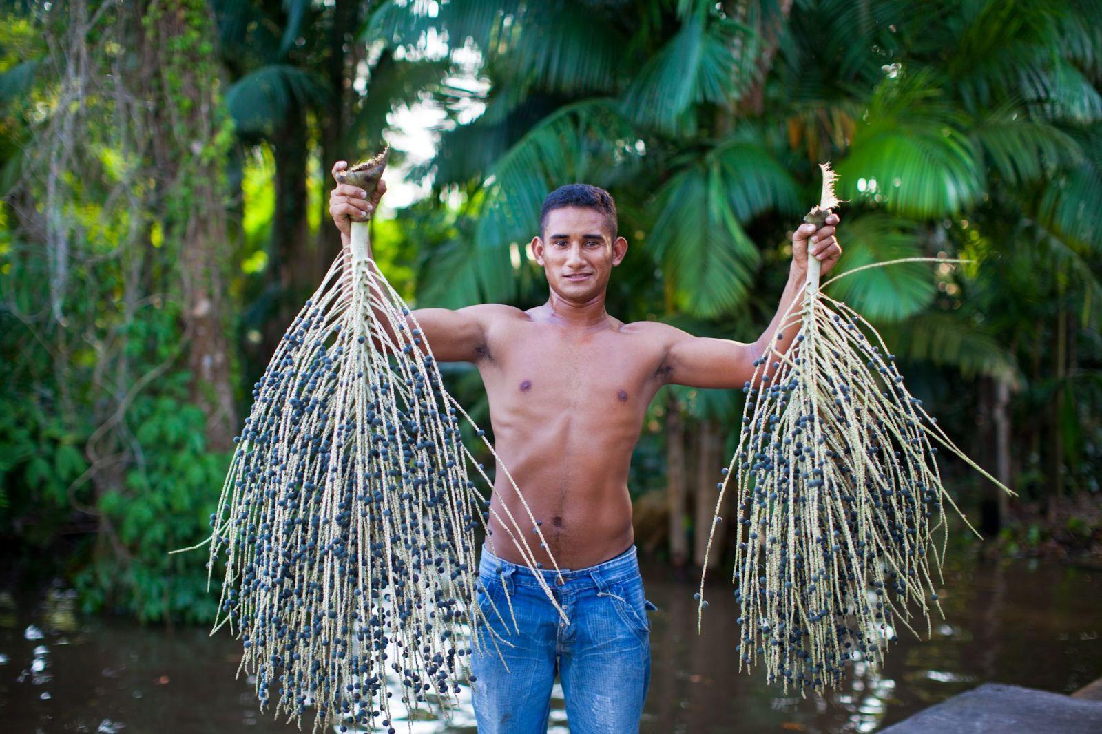 Kam sa podelo Acaico? Populárne brazílske ovocie sa vracia v novom šate