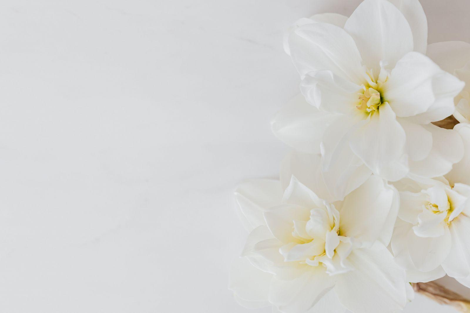 Príklad fotografie s dobrým vyvážením bielej
