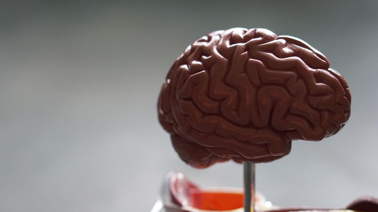 Vedci vynašli spôsob, ako zrýchliť učenie o 40 %