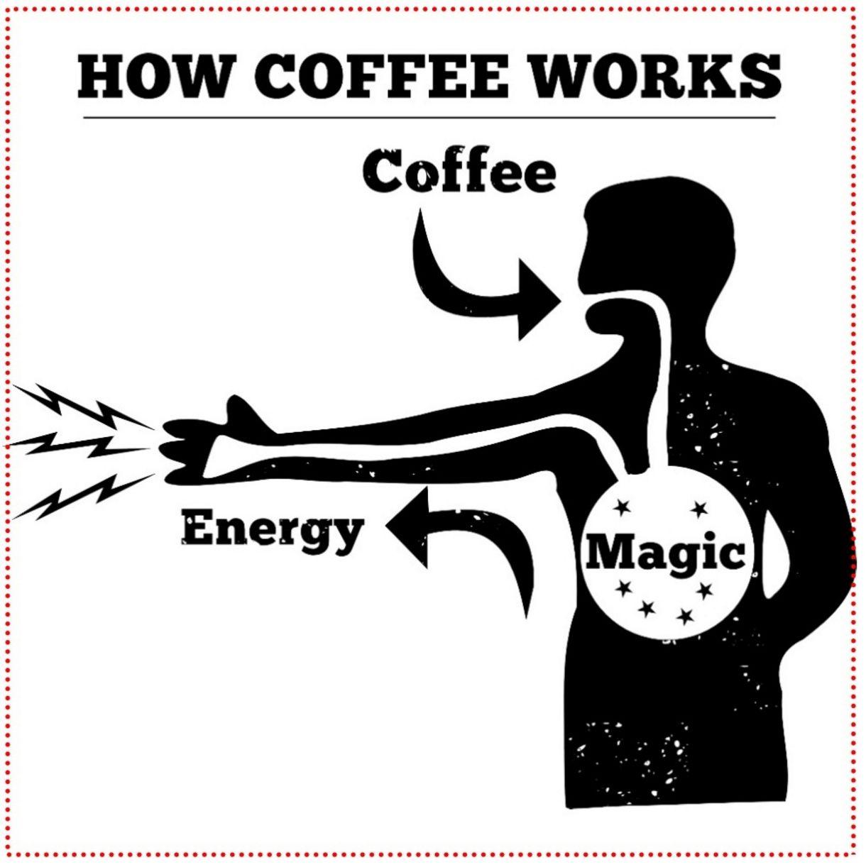 Víme, že kofein je náš kamarád, ale jak je na tom s ovlivňováním výkonu? Podívej se na nadílku faktů, zajímavostí, překvapivých závěrů a náš test