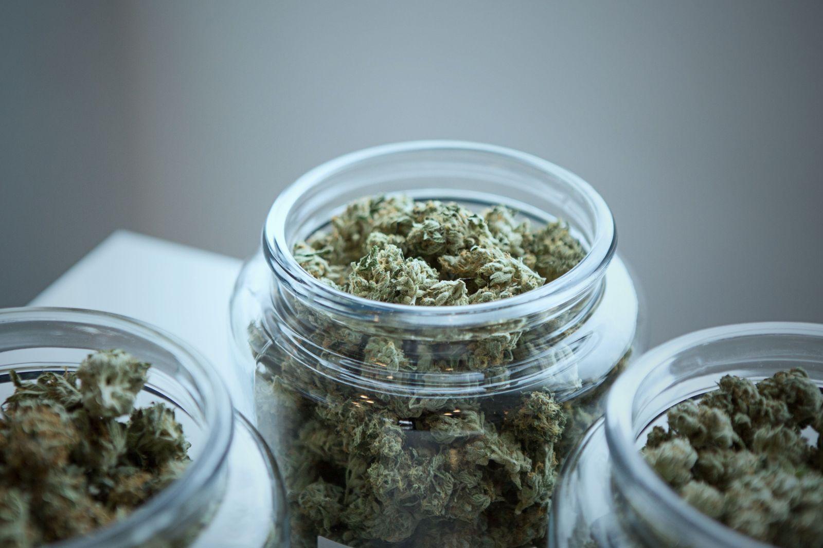 Marihuana môže nahradiť lieky proti bolesti. Štúdia tvrdí, že je efektívnejšia než tieto lieky