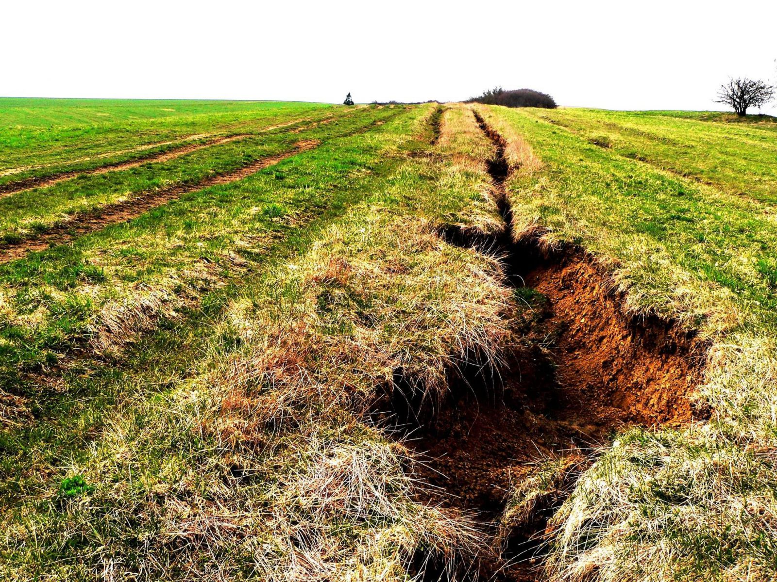 Vysušuje sa nám aj Slovensko. Slovák tvrdí, že za globálne otepľovanie môže najmä vysušovanie pevniny (Rozhovor)