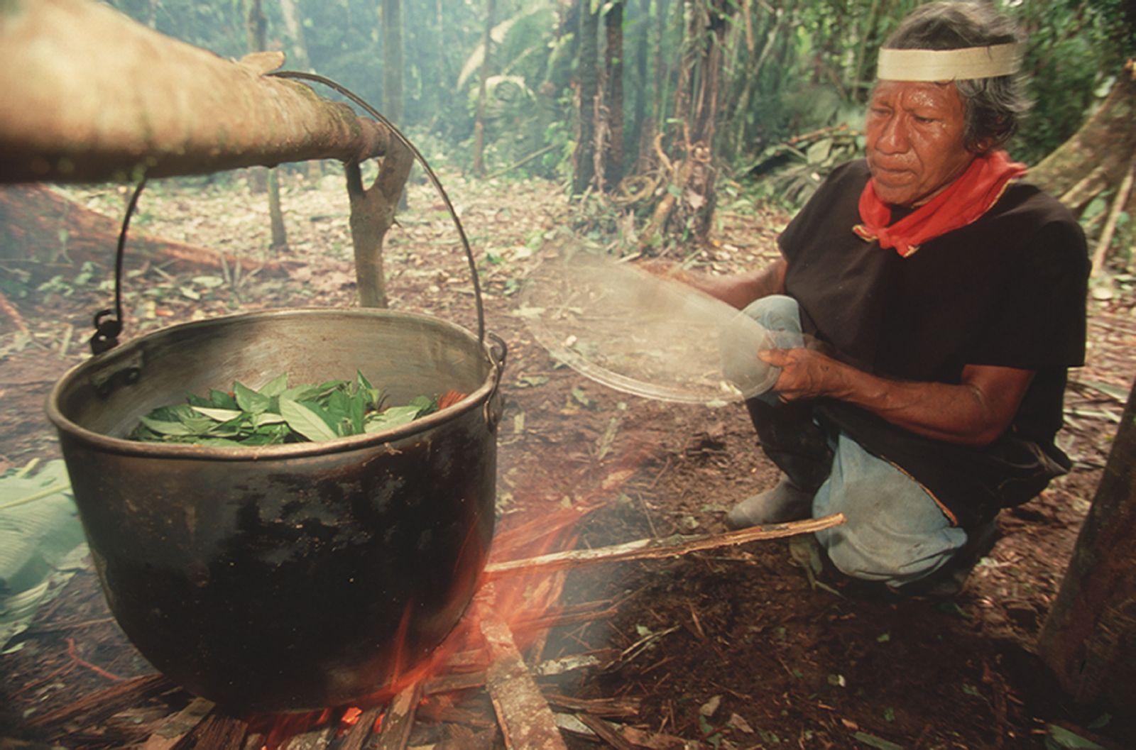 Katka odjela do Peru na ayahuacový rituál. Setkala se s démony, pak se jí rozjely psychózy a musela i na elektrošoky