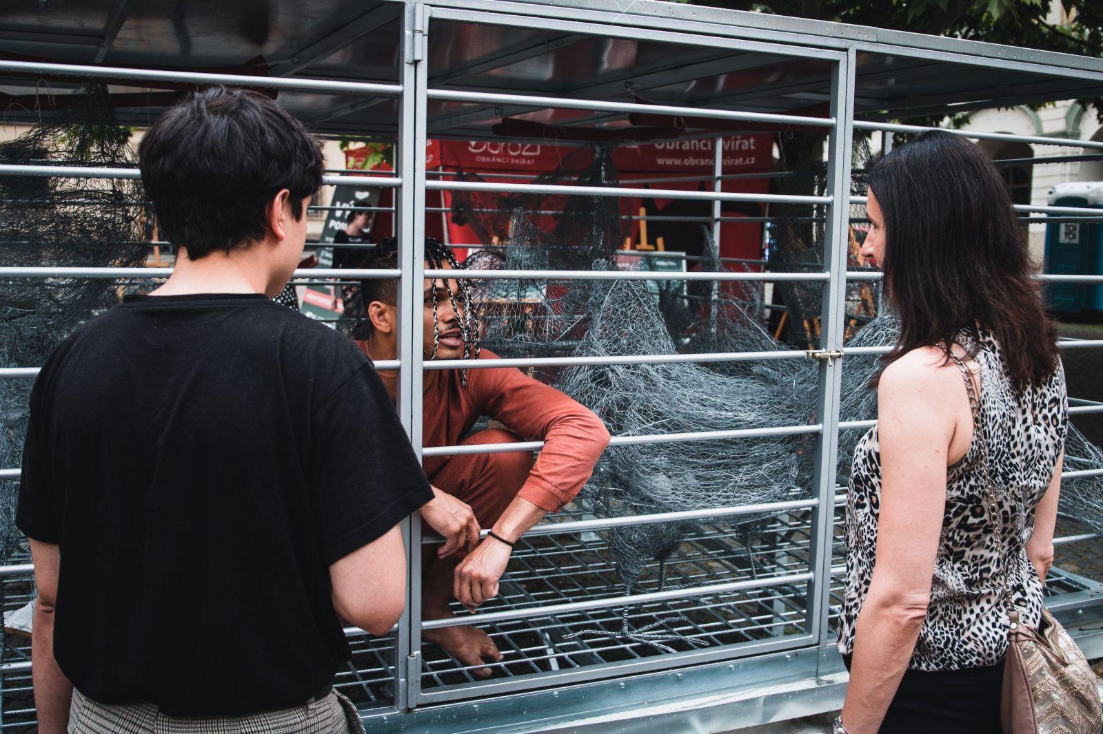 Ben Cristovao se na ulici zavřel do klece. Přidal se k dalším osobnostem, kteří chtějí ukončit klecový chov slep