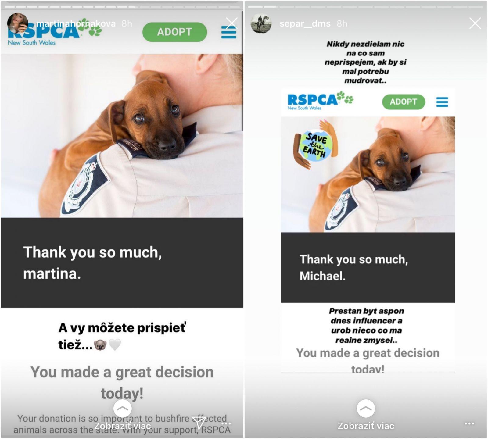 Separ aj Moma vyzývajú Slovákov, aby pomohli v boji s požiarmi a záchranou zvierat v Austrálii. Speváčka Pink venovala 500-tisíc