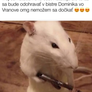 Tomaš bohman